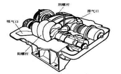 螺杆式空压机转子图